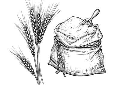 Wheat and sack of flour.